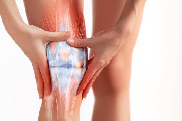 Bestandteile Knie, Knieschmerzen